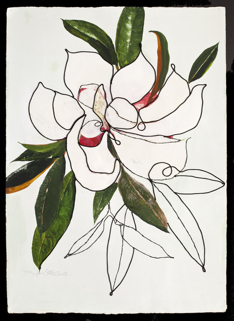Collages Magnolia Grandiflora