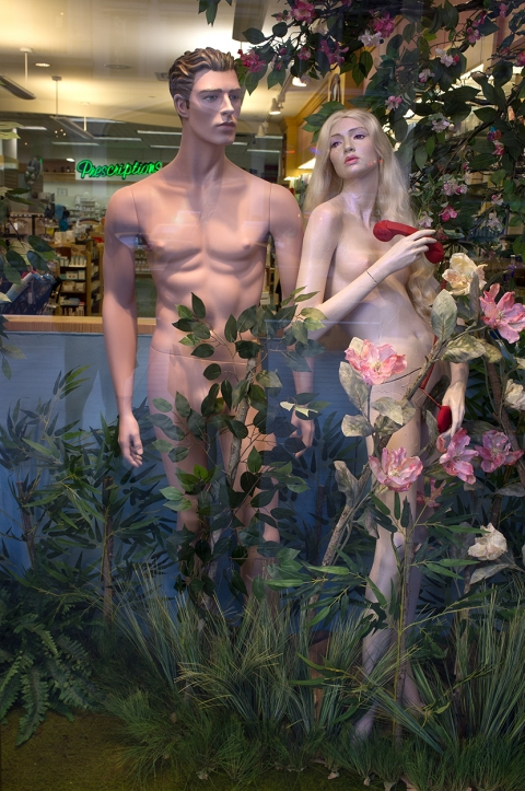 The Daily Drip Adam & Eve on West 57th Street