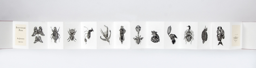 SUE JOHNSON Evolutionary Paths Copper plate intaglio prints