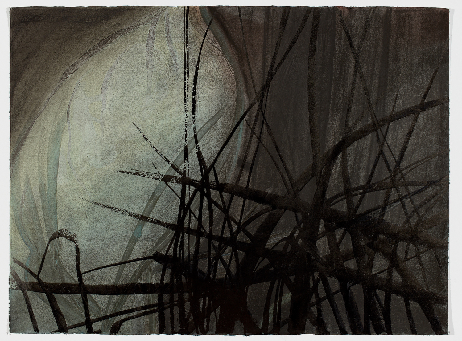 Land Night Sage Oil and Charcoal on Arches Huile Paper / 22 inches high by 30 inches wide / 2016