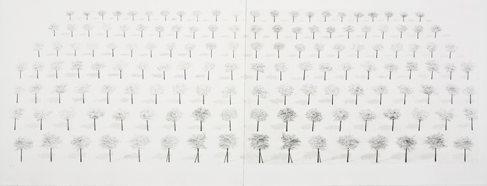 Sunghee  Pae Ideal Landscape