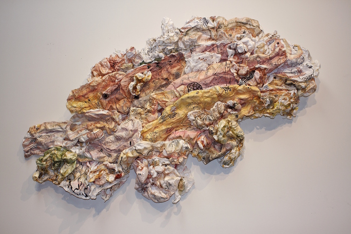 SUSAN GREER EMMERSON Paintings: Wall Sculpture ink and acrylic on cut and molded Tyvek