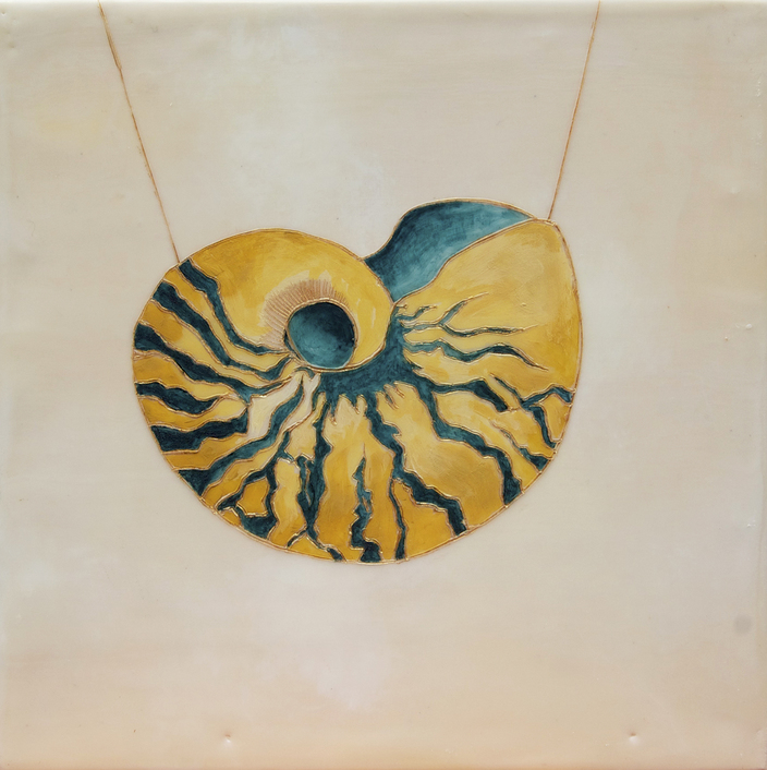 sea life nautilus 2