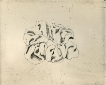 Susan Jane Walp Prints etching on zinc with ink roll