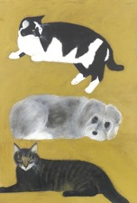 Sylvia Sherwin Goldberg Animals oil pastel and pencil on paper
