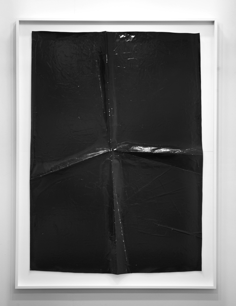 TATIANA KRONBERG 2015 Photogram