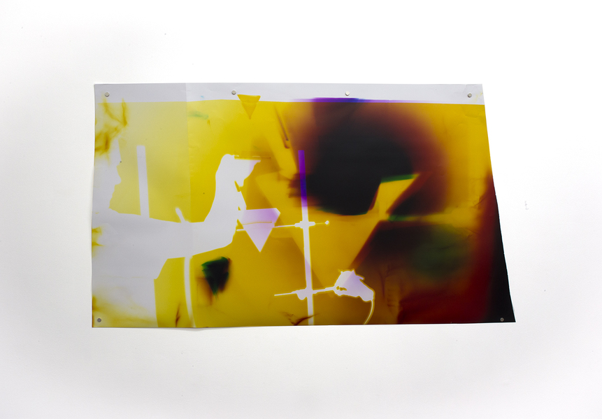 TATIANA KRONBERG 2017 chromogenic photogram