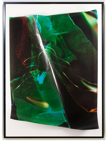 TATIANA KRONBERG work chromogenic photogram mounted on aluminum