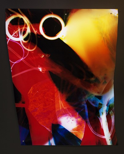 TATIANA KRONBERG work Chromogenic Photogram
