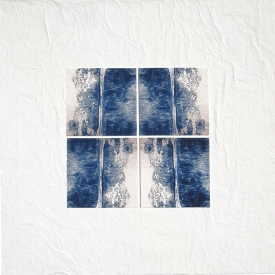 Tina Seligman Counterpoints 1 (2008) digital pigment prints on Hahnemuhle rag, Unryu, block  printing ink, museum board on canvas
