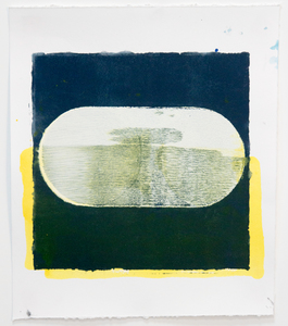 tom martinelli paper, recent acrylic on paper