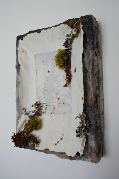 Tomoko Amaki Abe 2014-2015 porcelain, wax, moss, sea weed