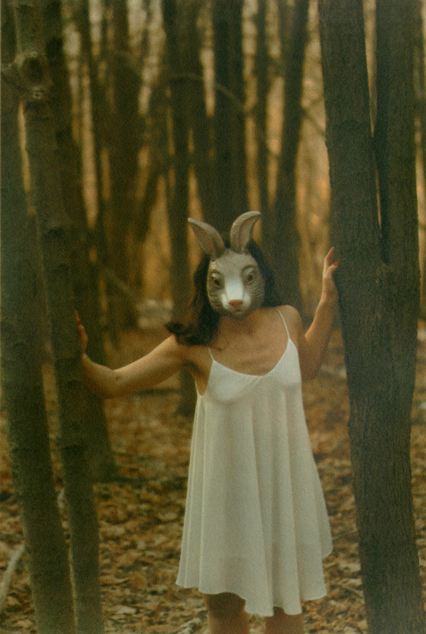 White Rabbit Tri-Color Gum Bichromate print over Cyanotype