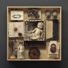 Wendy Aikin Cabinet of Curiosities Mixed Media