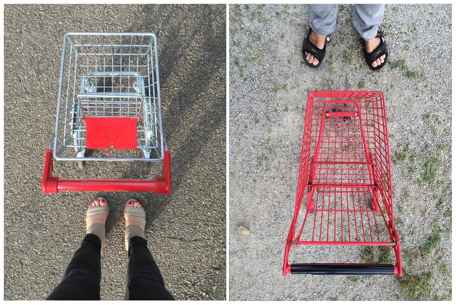 Double Self Portraits  Mini Shopping Carts