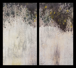 Diptychs Waterfalls Diptych, No. 12
