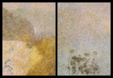 Nature-based Abstraction Diptychs Nature-based Abstraction Diptych, No. 3