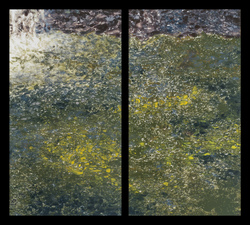 Waterfall Diptychs ink monotype on paper