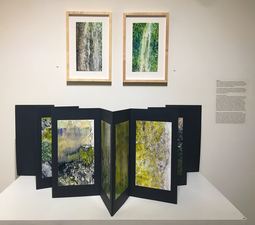 Mitchell Giddings Fine Arts, Brattleboro, VT March 2 - April 14, 2019
