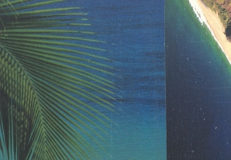 Will Wadlington Tropical Series (8 images) Collage on panel