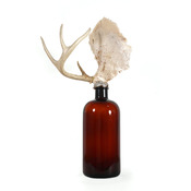 Wilson Avenue Loft Artists FARNÖSH OLAMAI BIRCH Vintage Bottle, Coral & Antller