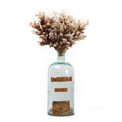 Wilson Avenue Loft Artists FARNÖSH OLAMAI BIRCH Vintage Bottle, Coral