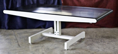 FURNITURE 2 Milion Dollar Table