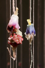 Marie Yoho Dorsey Arrangements Hand-stitched silk flowers, silk, wax