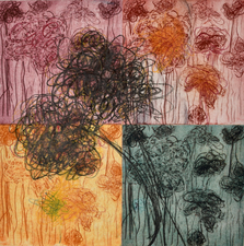 Abby DuBow Mixed Media Etching: Dry point, hard ground, Hand coloring