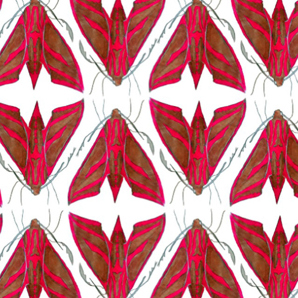 Murals, fabrics, repeating designs moth patter