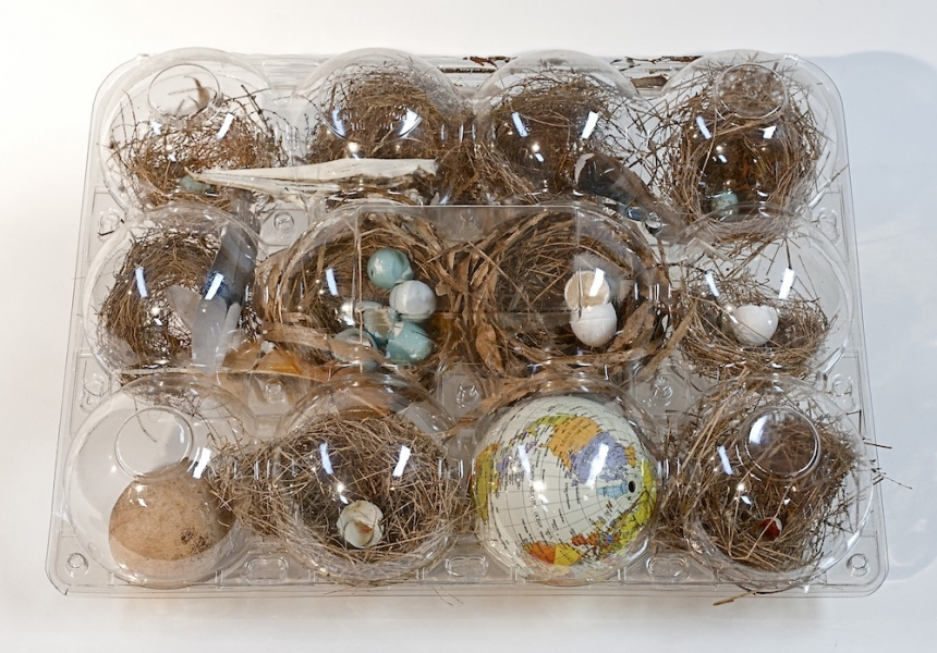2012   Birds have nests.