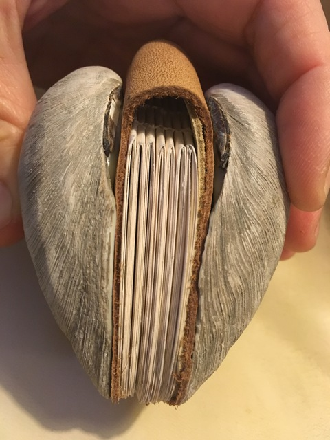 Alex Branch Clam Shell Book Clam shell, paper, leather, thread