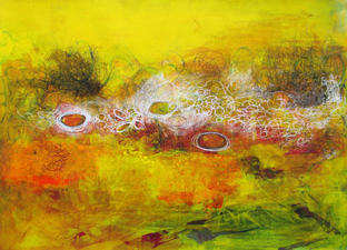 ALI HERRMANN Abstract Biomes acrylic, ink, wax crayon and graphite on paper