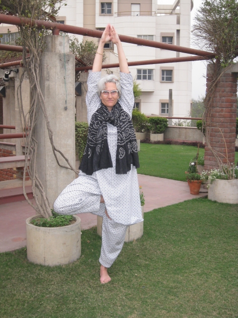 "Tapestries, Yoga, and India ""Tree Pose in Delhi"""