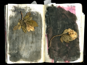 Amie Oliver Botanicals mixed media on mulberry paper