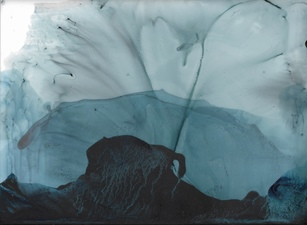 Amie Oliver Arcadia Lost Series Ink a. Gum Arabic on polypropylene vellum