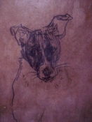 ABMacD Dogs Encaustic and charcoal on cardboard