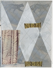a     n     d     r     e     w            z     a     r     o     u 2012 vellum + paper collage + graphite on spray-painted paper