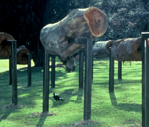 ANITA GLESTA ECHO OF FARADAY WOOD, Royal Botanical Gardens, Sydney, Australia, 1997 (Commissioned by Art Gallery of New South Wales)