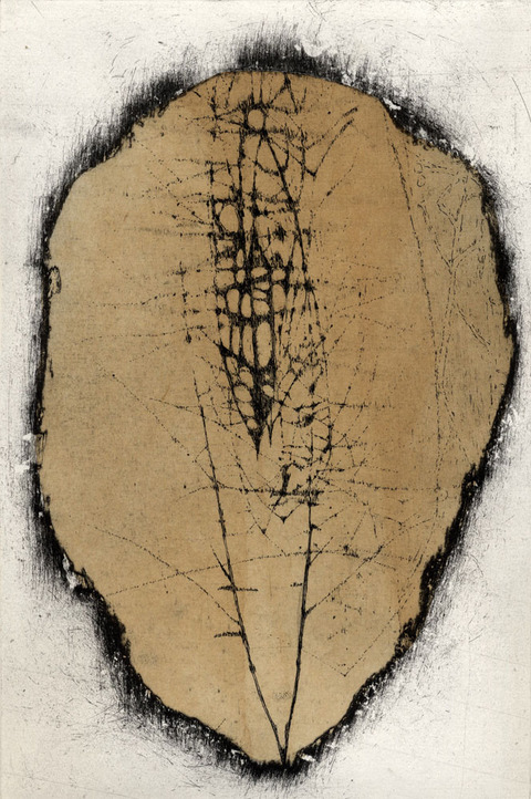 Anita S. Hunt   Puddle Series etching on copper with cutout gampi chine collé