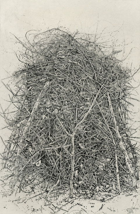 Anita S. Hunt   Just Released etching, chine collé