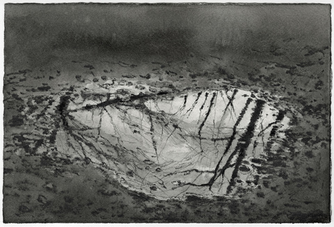 Anita S. Hunt   Puddles watersoluable graphite and ink on watercolor paper