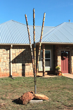 Cylinder Tree, Carbon, Texas Mid-range ceramic