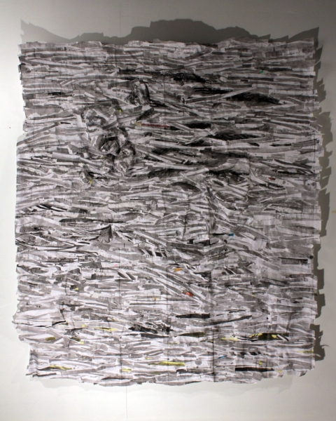 2010 Untitled (Shred I)
