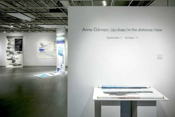 Anne Gilman Up close / in the distance / now
