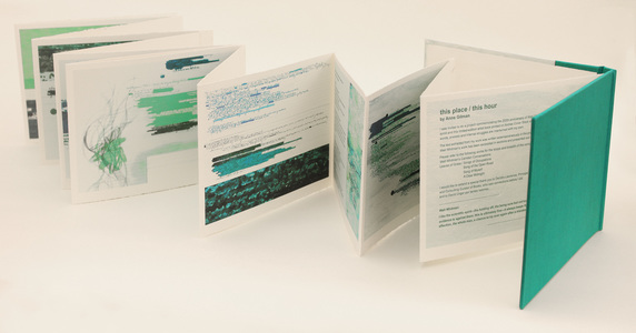 Anne Gilman Limited Edition Artist Books Limited-edition accordion-fold artist book: digital prints on Arches Cover Stock with hand additions.