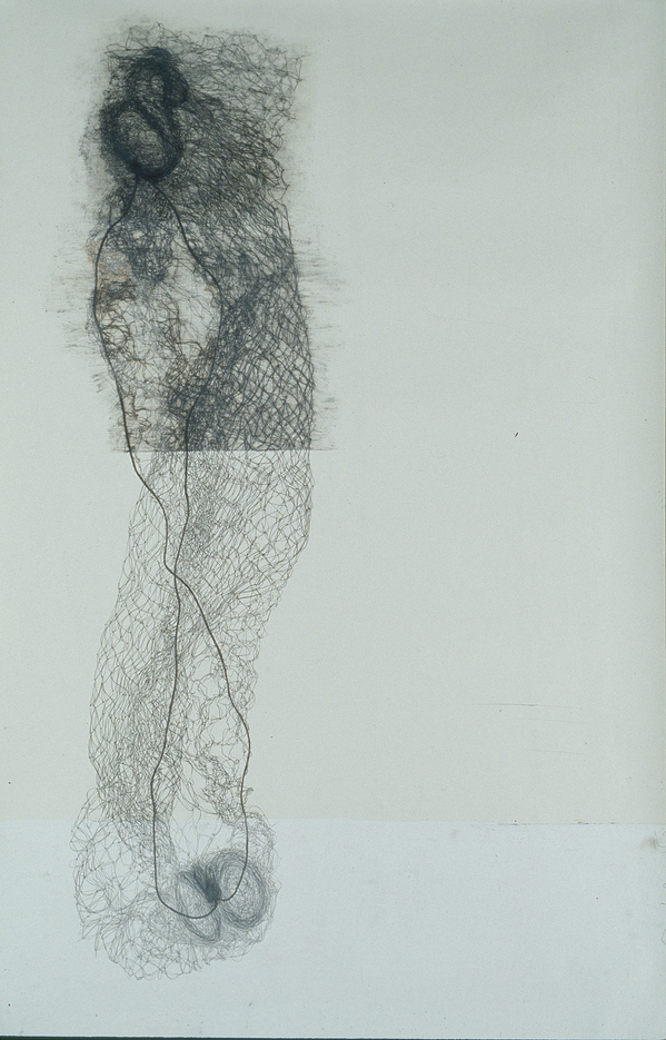 Archived Drawings (1993-2004) Twist (hairnet drawing)