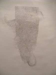 Anne Louise Allen Dust Bunny Drawings Silverpoint on prepared paper