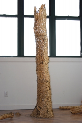 Anne Peabody Sick Tree, 2008