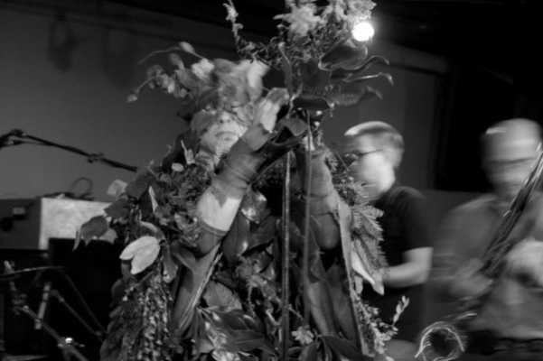 Anne Peabody Performance Live Plants